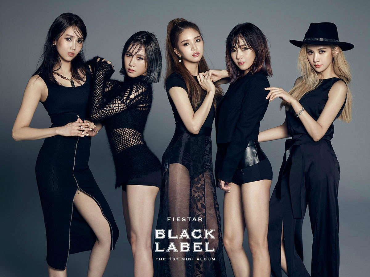 Fiestar Black Label Korean mini album